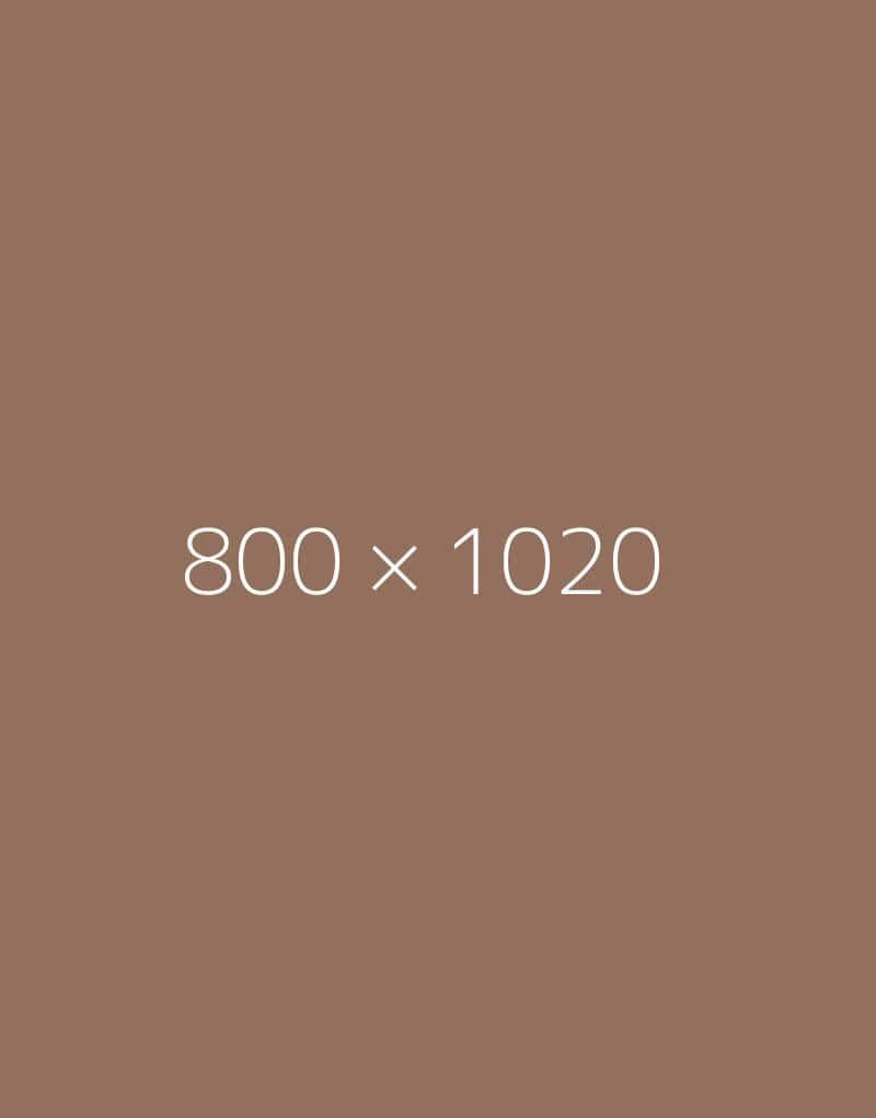 hongo 800x1020-c-ph