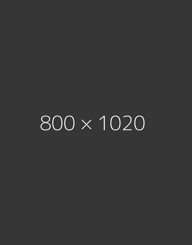hongo 800x1020-d-ph