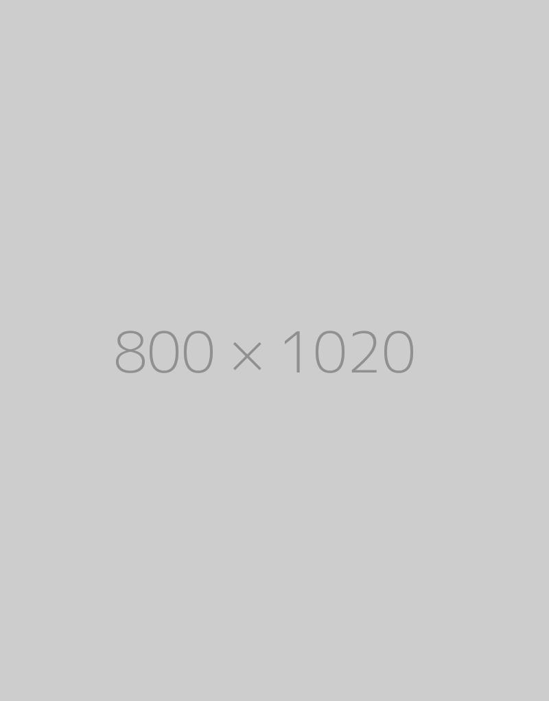 hongo 800x1020-ph